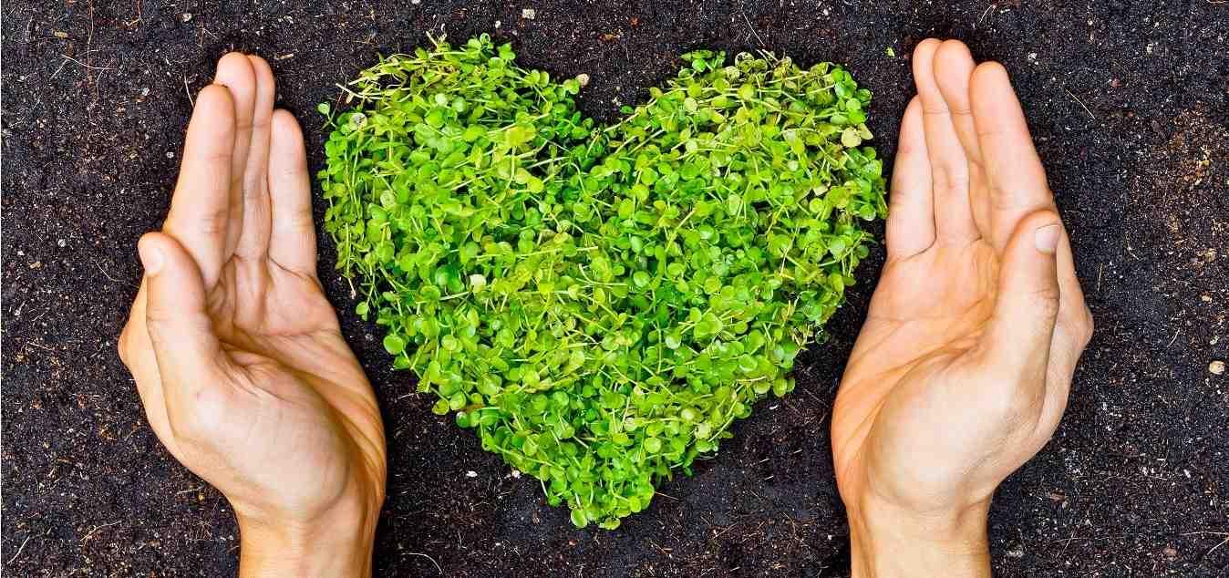 Reciclar, reducir, reutilizar y revalorizar